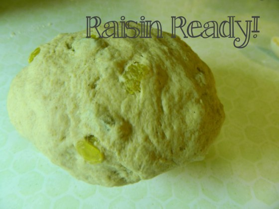 raisin ready