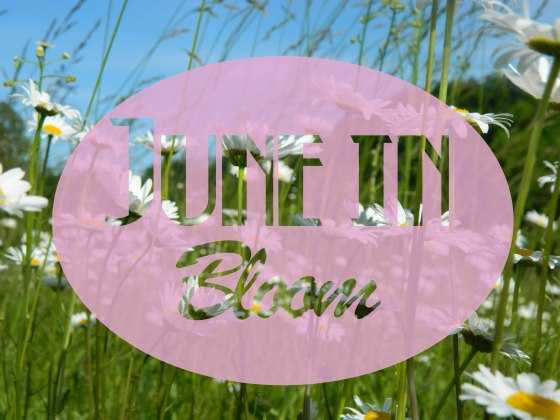 June in Bloom