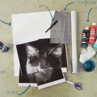 Geometric Pet Painting DIY